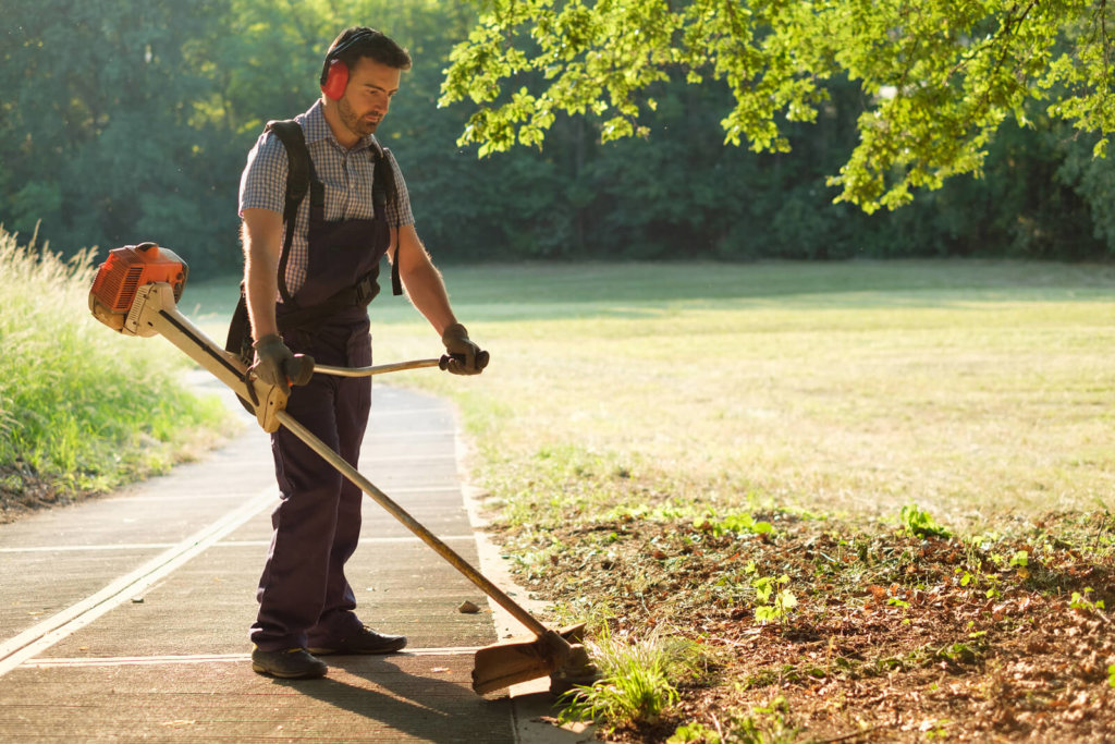 The Best Electric Yard Trimmers