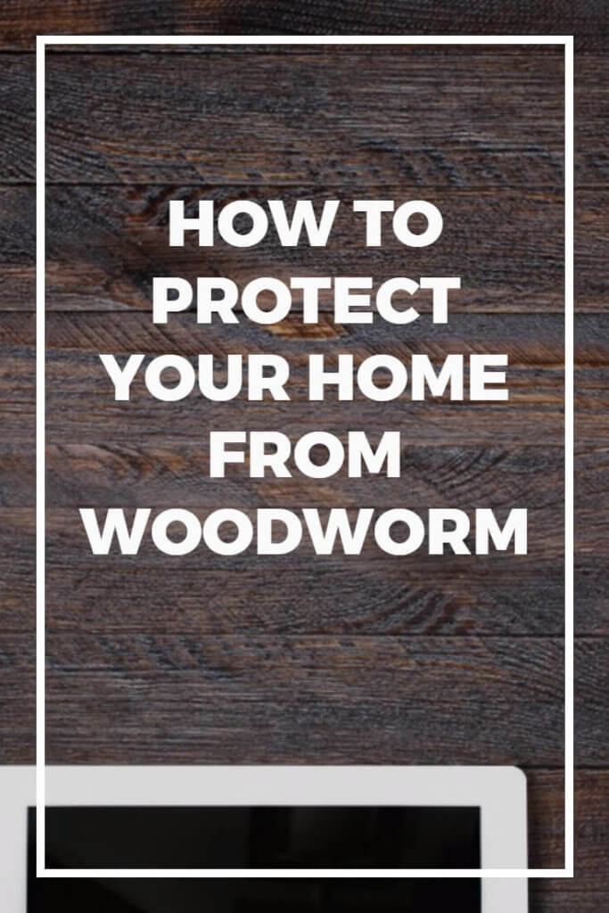 Woodworm - the very word sends shivers down the spine of many home owners. After all, it's no secret that woodworm can cause thousands of dollars worth of damage if left unnoticed. This guide helps you to identify and stop woodworm, plus stop the problem coming back in the future. This should be considered essential reading for anyone who owns their own home!