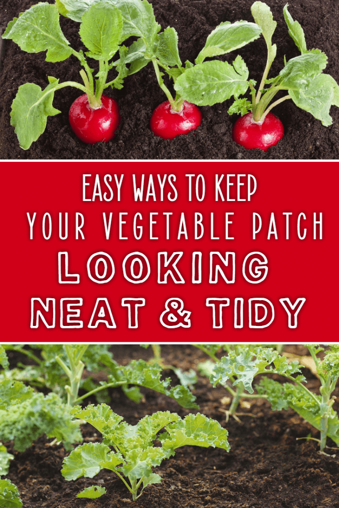 How to keep your vegetable patch neat and tidy. Gardeners with a vegetable plot will know that they're not always the most beautiful things to look at. Prepare to have your best looking yard ever with these simple tips though!